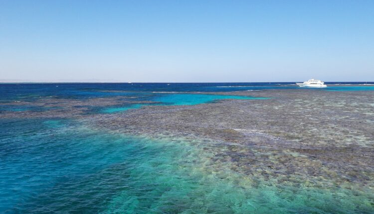 coral-reefs-5970427_1280